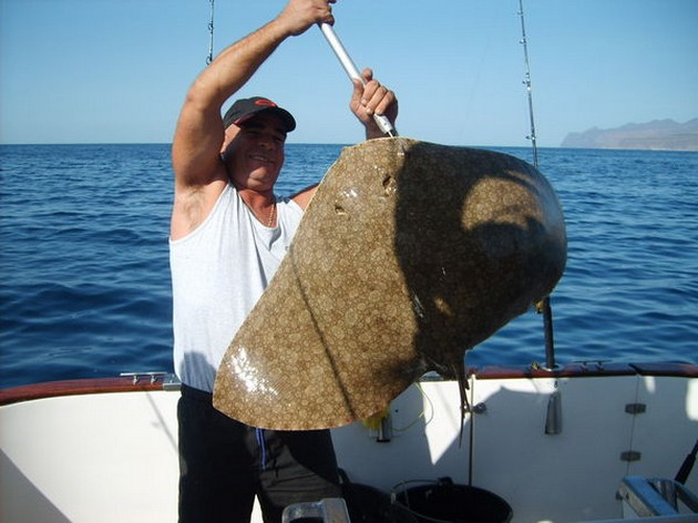 The last three days we were only fishing on our 50 - Cavalier & Blue Marlin Sport Fishing Gran Canaria