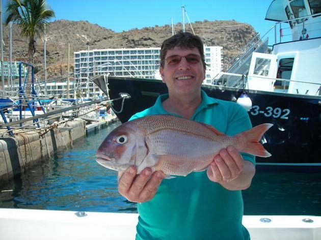 Puerto Rico 20.00 uurRIFVISSENDe White Marlin en de - Cavalier & Blue Marlin Sport Fishing Gran Canaria