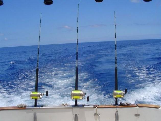 Puerto Rico - 19.45 uurDORADOAl de boten hebben vandaag - Cavalier & Blue Marlin Sport Fishing Gran Canaria