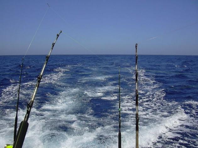 Puerto Rico - 17.15 uurÉÉN MINUUTDrie slepende boten - Cavalier & Blue Marlin Sport Fishing Gran Canaria
