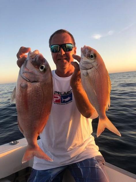 Deukje - Cavalier & Blue Marlin Sport Fishing Gran Canaria