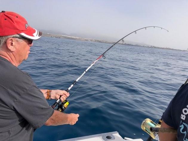 Calima - Cavalier & Blue Marlin Sport Fishing Gran Canaria