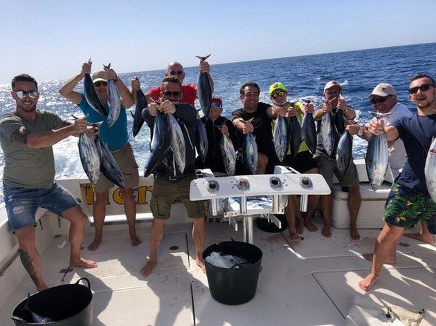 Plenty of Skipjacks - Cavalier & Blue Marlin Sport Fishing Gran Canaria