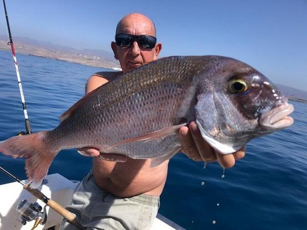 Wooooooow - Cavalier & Blue Marlin Sport Fishing Gran Canaria