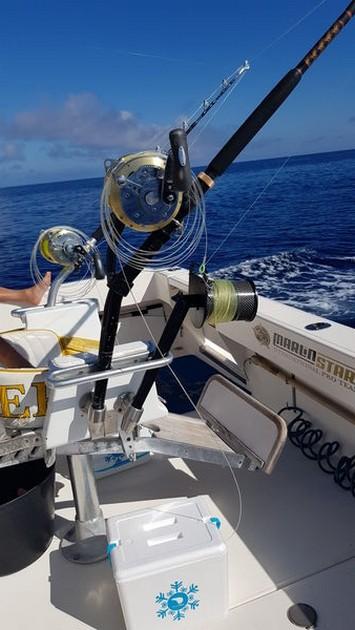 800 lbs Blue Marlin - Cavalier & Blue Marlin Sport Fishing Gran Canaria