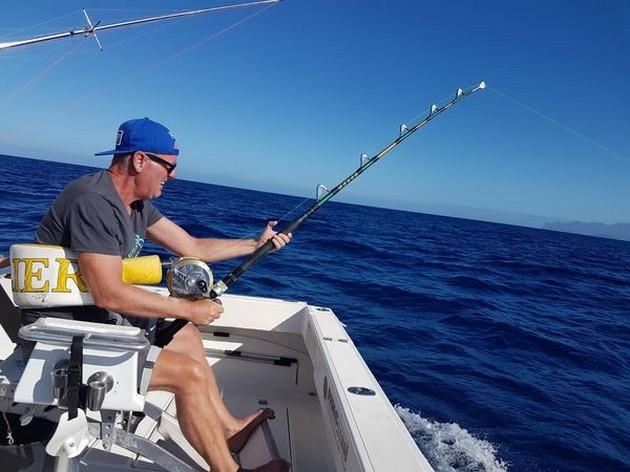 Yessssssss - Cavalier & Blue Marlin Sport Fishing Gran Canaria