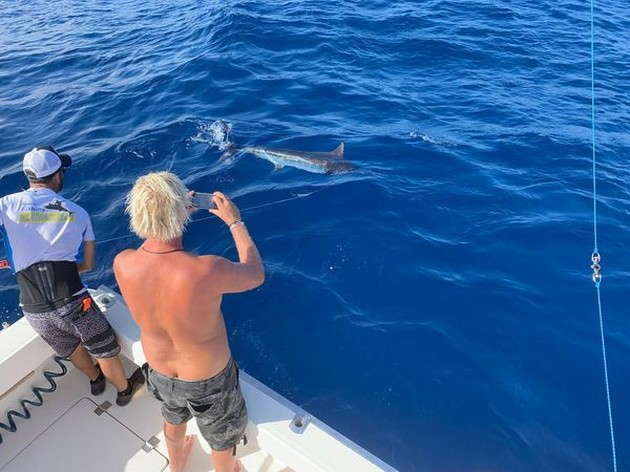 Marlin & Tuna - Cavalier & Blue Marlin Sport Fishing Gran Canaria