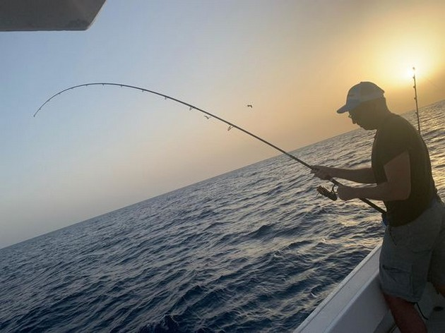 Bottom fishing - Cavalier & Blue Marlin Sport Fishing Gran Canaria