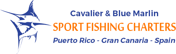 Homepage - Cavalier & Blue Marlin Sport Fishing Gran Canaria