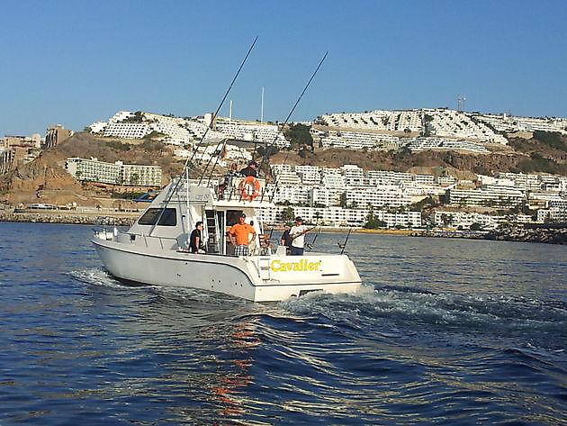 Fase 1 - Cavalier & Blue Marlin Sport Fishing Gran Canaria