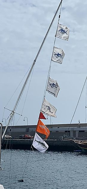 Only a few days left ! - Cavalier & Blue Marlin Sport Fishing Gran Canaria