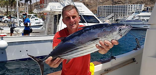 Skipjack Tonijn - Cavalier & Blue Marlin Sport Fishing Gran Canaria