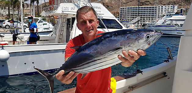 Skipjack Tuna - Cavalier & Blue Marlin Sport Fishing Gran Canaria