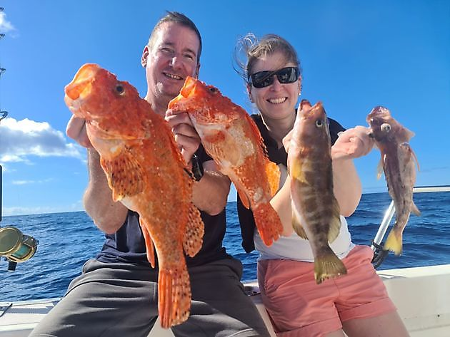 Schorpioen vis - Cavalier & Blue Marlin Sport Fishing Gran Canaria