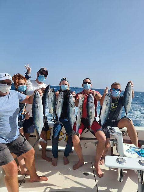 Tolle Fänge - Cavalier & Blue Marlin Sportfischen Gran Canaria