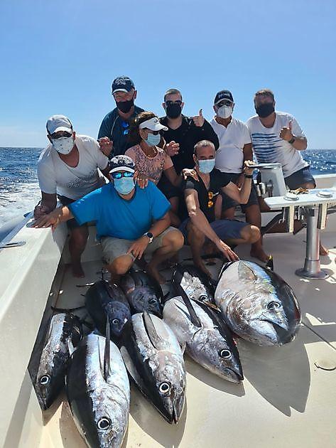 7/9 Albacores - 1/1 Big Eye Thunfisch - Cavalier & Blue Marlin Sportfischen Gran Canaria