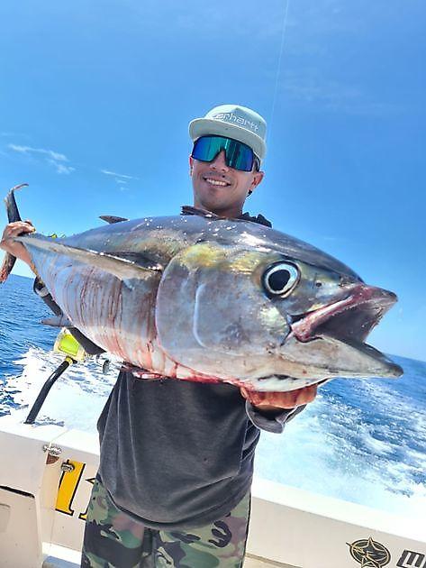 3 Grootoog Tonijnen - Cavalier & Blue Marlin Sport Fishing Gran Canaria