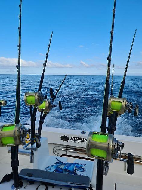 Lo spettacolo continua - Cavalier & Blue Marlin Pesca sportiva Gran Canaria