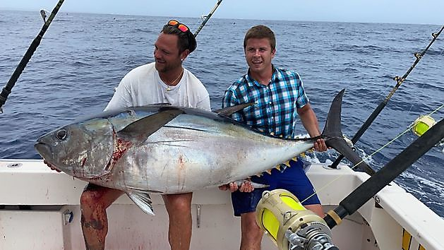1/2 atún ojo grande - Pesca Deportiva Cavalier & Blue Marlin Gran Canaria