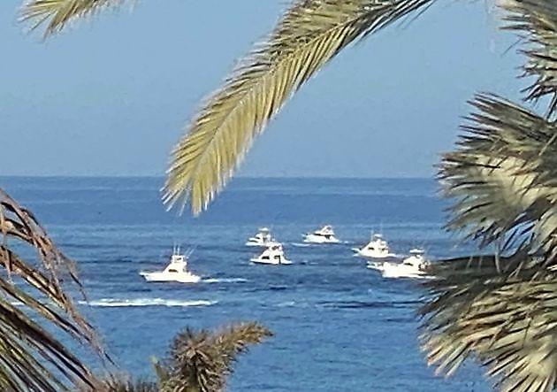 XXXII Pasito Big Game Tounament - Pesca Deportiva Cavalier & Blue Marlin Gran Canaria