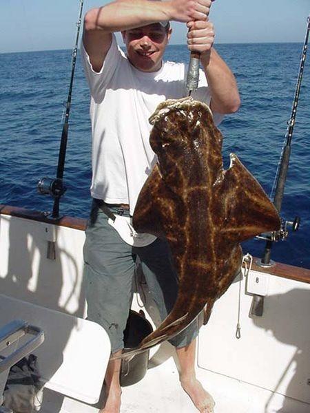 angel tiburon Pesca Deportiva Cavalier & Blue Marlin Gran Canaria
