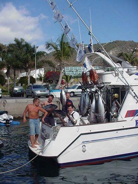 atún albacora y ojo grande Pesca Deportiva Cavalier & Blue Marlin Gran Canaria