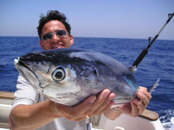 02/06 skipjack tuna Cavalier & Blue Marlin Sport Fishing Gran Canaria