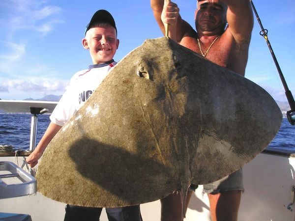 02/09 butterfly ray Cavalier & Blue Marlin Sport Fishing Gran Canaria