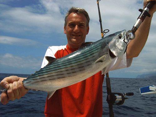 08/04 north atlantic bonito Cavalier & Blue Marlin Sport Fishing Gran Canaria