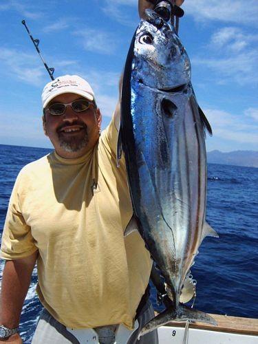 30/04 skipjack tuna Cavalier & Blue Marlin Sport Fishing Gran Canaria
