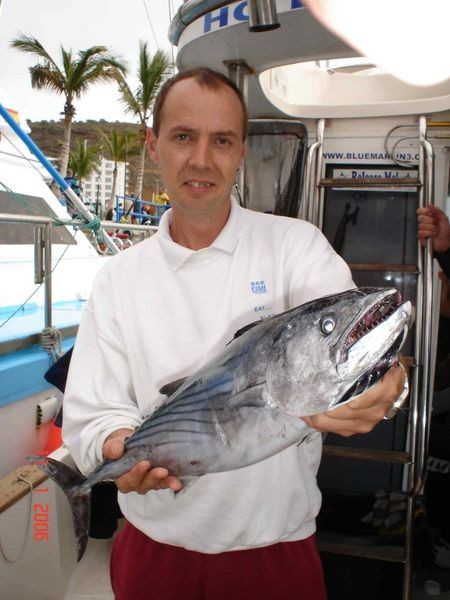 11/01 north atlantic bonito Cavalier & Blue Marlin Sport Fishing Gran Canaria