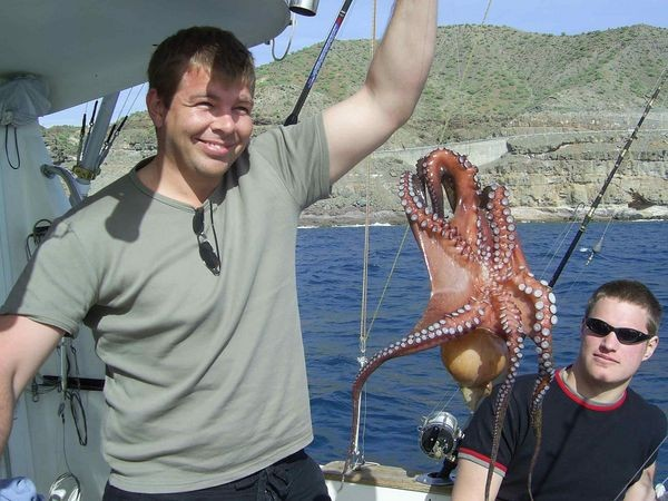 22/01 octopus Cavalier & Blue Marlin Sport Fishing Gran Canaria