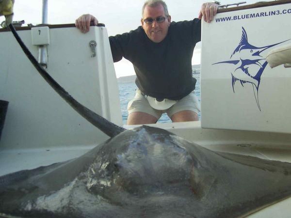 03/03 common stingray Cavalier & Blue Marlin Sport Fishing Gran Canaria