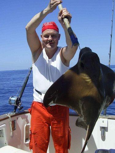 08/04 eagle ray Cavalier & Blue Marlin Sport Fishing Gran Canaria