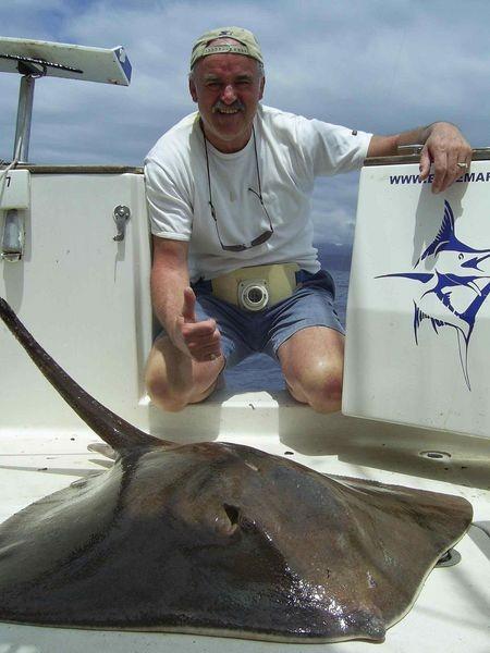25/04 common stingray Cavalier & Blue Marlin Sport Fishing Gran Canaria