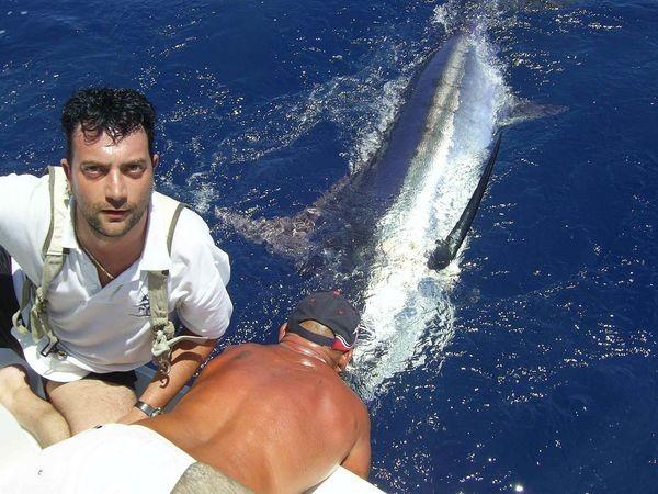 02/06 blue marlin Cavalier & Blue Marlin Sport Fishing Gran Canaria