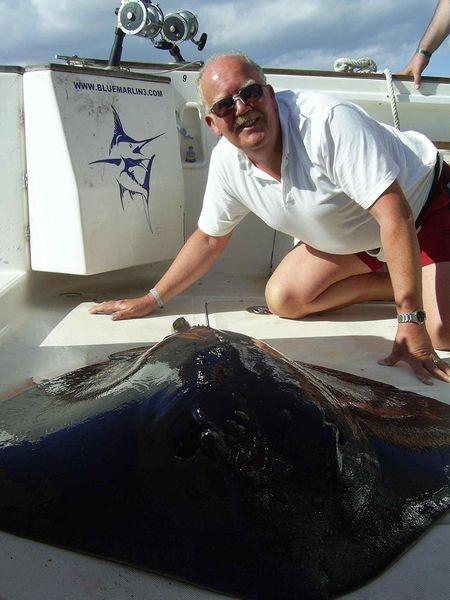 13/06 common stingray Cavalier & Blue Marlin Sport Fishing Gran Canaria