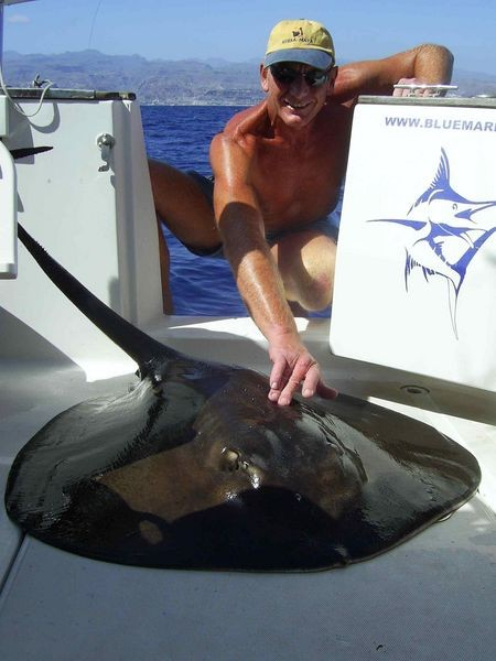 30/06 round stingray Cavalier & Blue Marlin Sport Fishing Gran Canaria