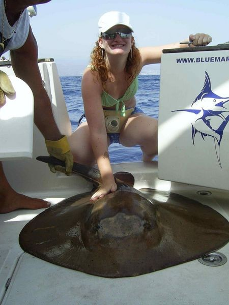 11/07 roughtail stingray Cavalier & Blue Marlin Sport Fishing Gran Canaria