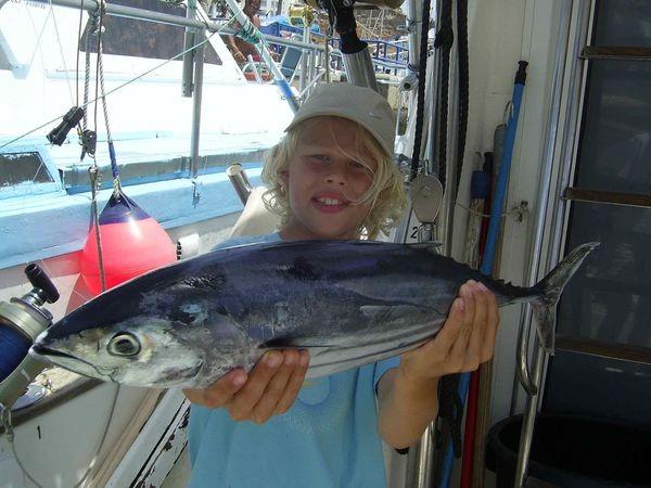 04/08 skipjack tonfisk Cavalier & Blue Marlin Sport Fishing Gran Canaria