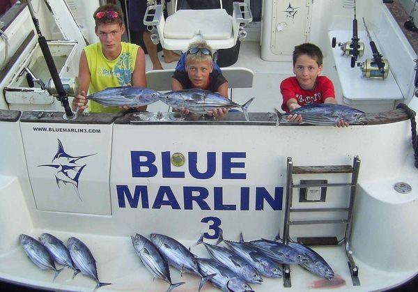 20/08 skipjack tuna Cavalier & Blue Marlin Sport Fishing Gran Canaria