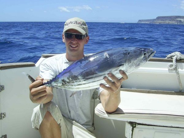 23/08 skipjack tuna Cavalier & Blue Marlin Sport Fishing Gran Canaria