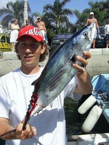 13/10 north atlantic bonito Cavalier & Blue Marlin Sport Fishing Gran Canaria