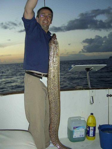 Moray Mediterranean Cavalier & Blue Marlin Sport Fishing Gran Canaria
