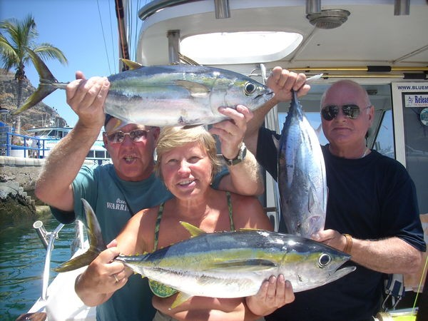 yellowfin & skipjack Cavalier & Blue Marlin Sport Fishing Gran Canaria