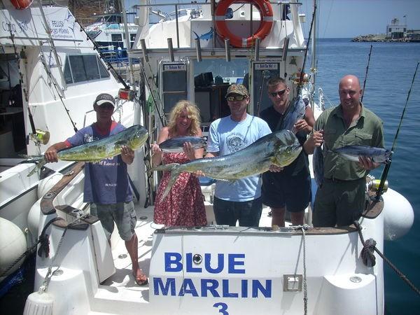 dorado-skipjacks Cavalier & Blue Marlin Sport Fishing Gran Canaria