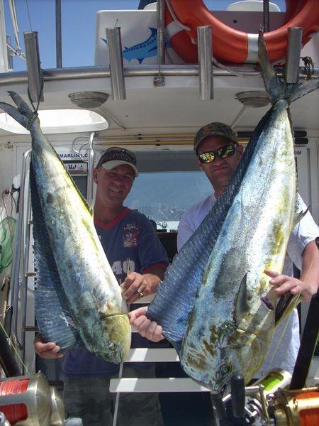 19/06 dorado Cavalier & Blue Marlin Sport Fishing Gran Canaria