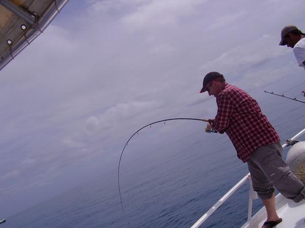 Hooked Up ! Cavalier & Blue Marlin Sport Fishing Gran Canaria