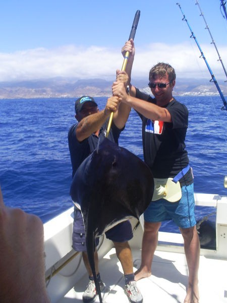 Black Stingray Cavalier & Blue Marlin Sport Fishing Gran Canaria