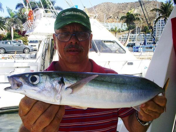 Makrele Spanisch Cavalier & Blue Marlin Sportfischen Gran Canaria